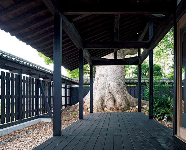 美しい焼杉に包まれた大和棟の古民家。
